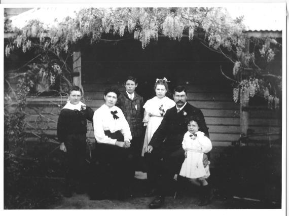 BDHC Mant Family